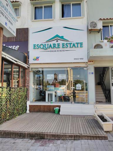 Esquare Estate Agency