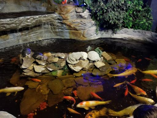 Aquarium «Seaport Aquarium», reviews and photos, 3400 Boardwalk, Wildwood, NJ 08260, USA