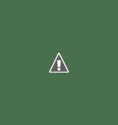 photo du restaurant Pizzeria la 33