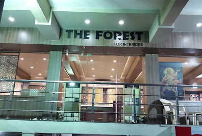 The Forest for InteriorMehsana