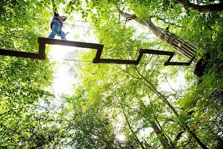 Reviews Go Ape Zip Line Treetop Adventure Eagle Creek Park Park In Indiana Trustreviewers Com