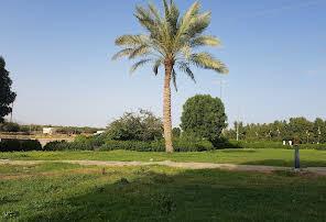 King Fahd Central Park