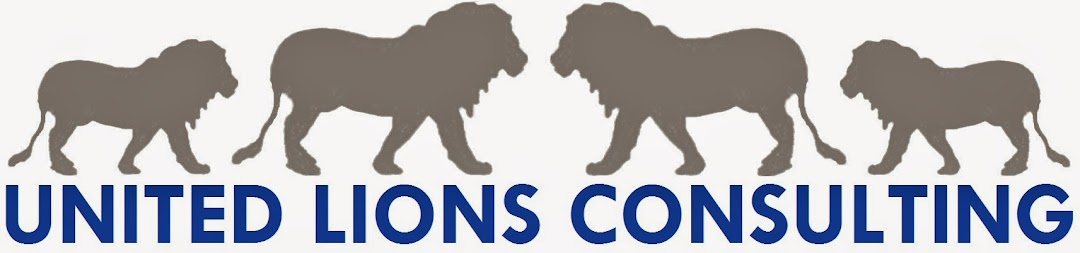 United Lions Consulting Inh. Fatih Aslan (M. A.)
