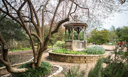 Carleen Bright Arboretum