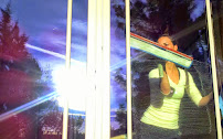 Examine This Report on Window Cleaning Bend Or