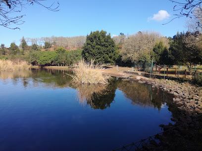Lagunas de Valleseco
