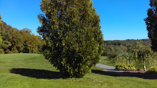 Golf Club «Vineyard Valley Golf Club», reviews and photos, 34 Brayman Hollow Rd, Pomfret Center, CT 06259, USA