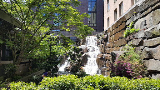 Park Ups Waterfall Garden Park Reviews And Photos 219 2nd Ave