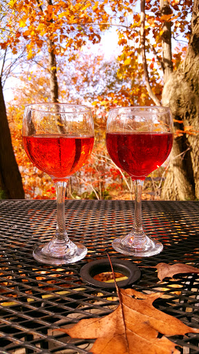 Winery «Myrddin Winery», reviews and photos, 3020 Scenic Dr, Berlin Center, OH 44401, USA