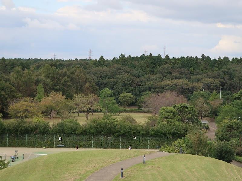 古墳型展望山(牧の原公園)
