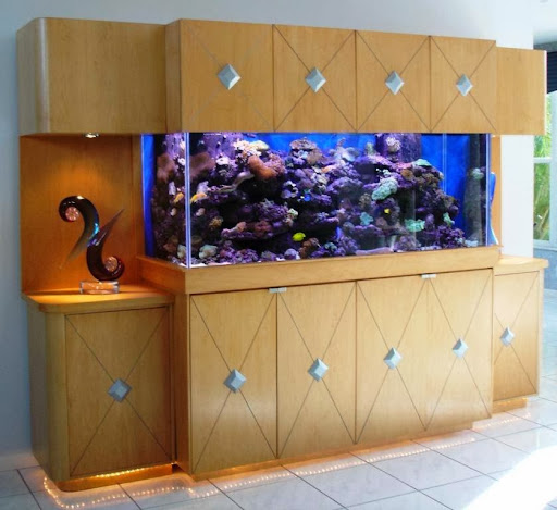 Tropical Fish Store «Jawz.net», reviews and photos, 75 N Saw Mill River Rd, Elmsford, NY 10523, USA