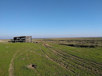 Observatorio de Aves, Salinas de Bonanza
