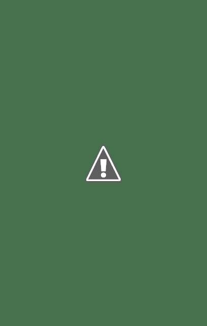 Casa Puig Soler