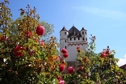Electoral Castle