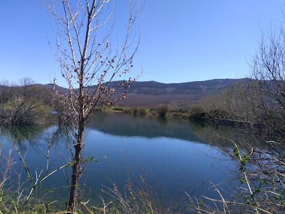Laguna del Salmoral de Prádena del Rincón