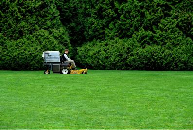 Procare Landscape Management