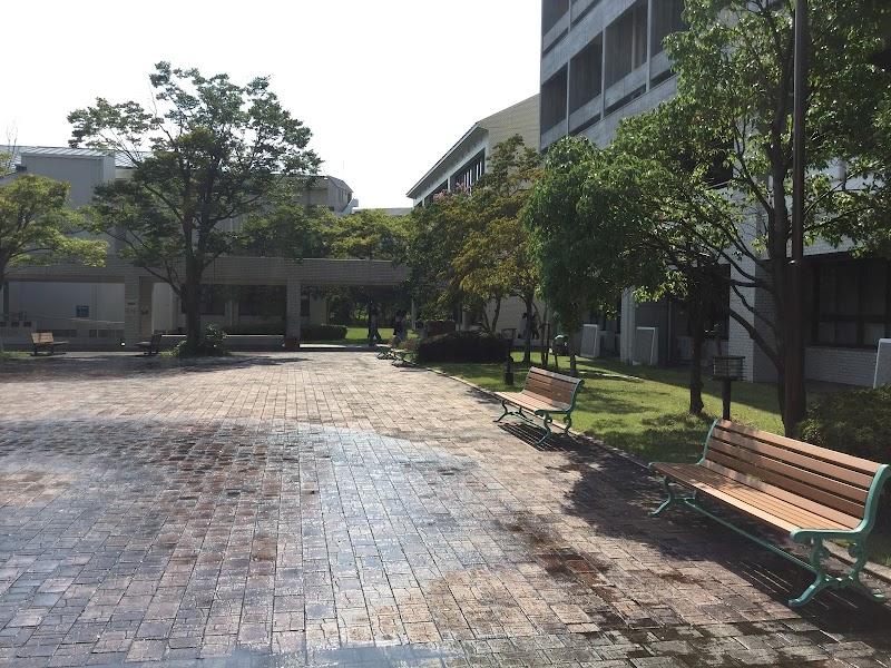 神戸 市 外国 語 大学