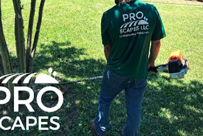 Pro Scapes LLC