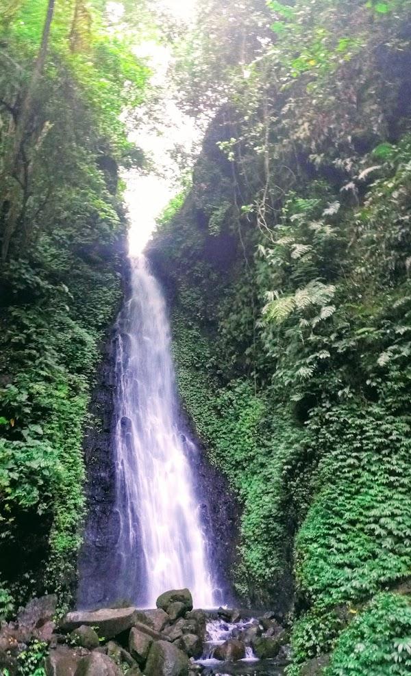 5 Air Terjun Di Ngawi Yang Bikin Kamu Betah Berlama Lama