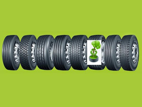AER Asociación Española de Neumáticos Reciclados