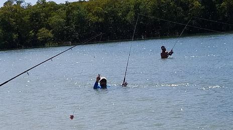 Fencing Contractors Punta Rassa