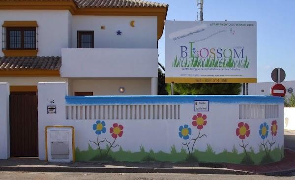 Blossom Ludoteca