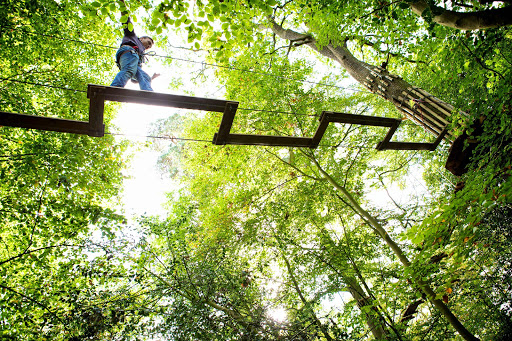 Recreation Center «Go Ape Zip Line & Treetop Adventure - Mill Stream Run Reservation», reviews and photos, 16200 Valley Pkwy, Strongsville, OH 44136, USA