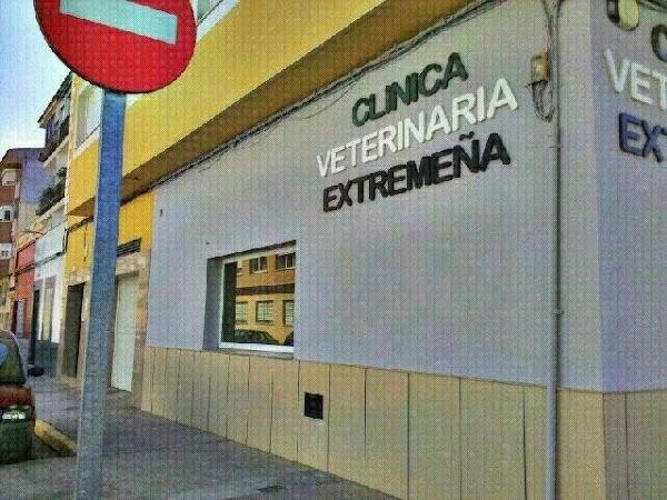 CLINICA VETERINARIA EXTREMEÑA - CLINIVEX