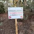 Kavaklidere Orman İşletme Müdürlüğü