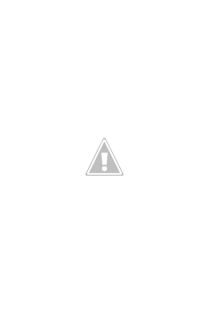Pet Shop Campo Grande Unidade II - Nova Lima