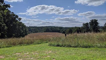Natural Lands' Hildacy Preserve