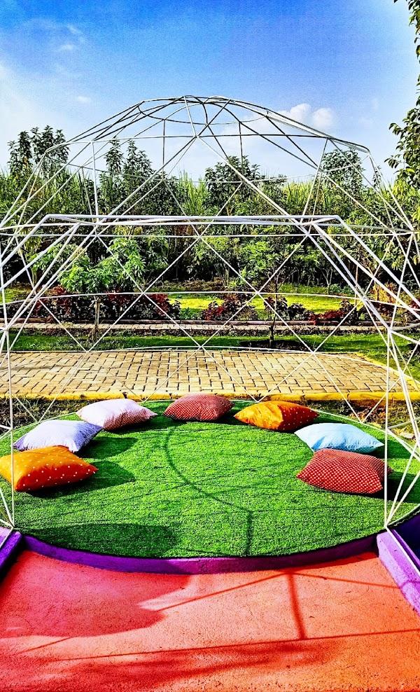 The iglo