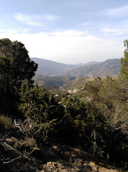Nevada Naturales
