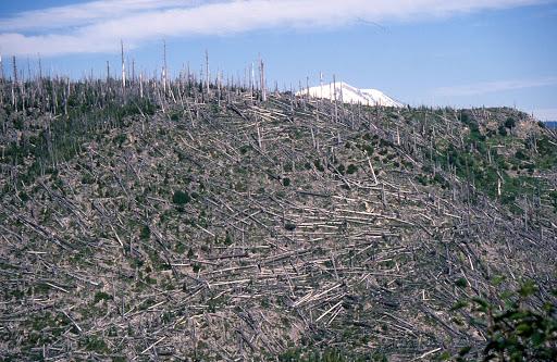 Monument «Mount St. Helens National Volcanic Monument Headquarters», reviews and photos, 42218 NE Yale Bridge Rd, Amboy, WA 98601, USA