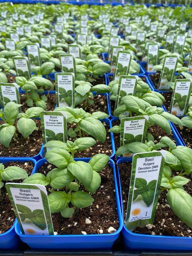 Jardinerie Green's Creek Organic Nursery à Ottawa (ON) | LiveWay