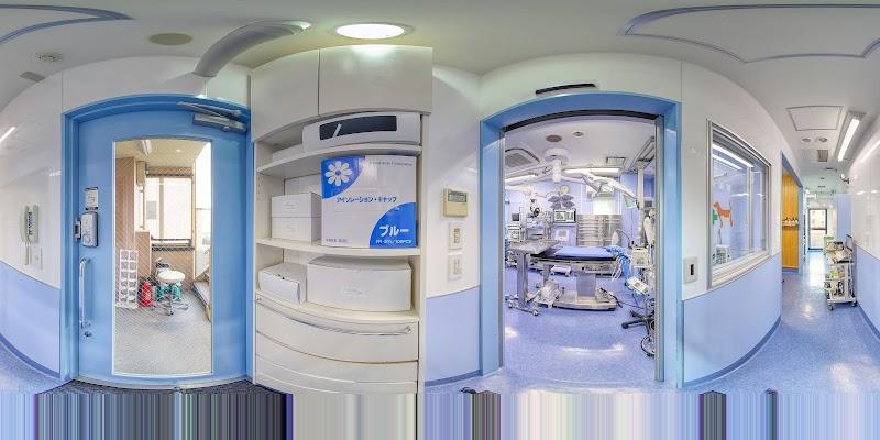 亀戸動物総合病院