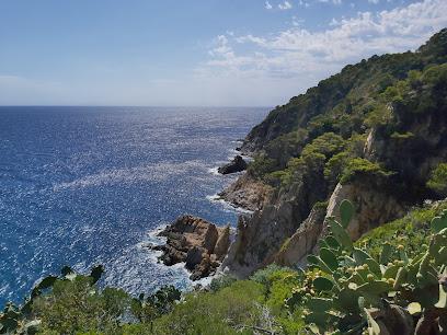 Tossa de Mar viewpoint
