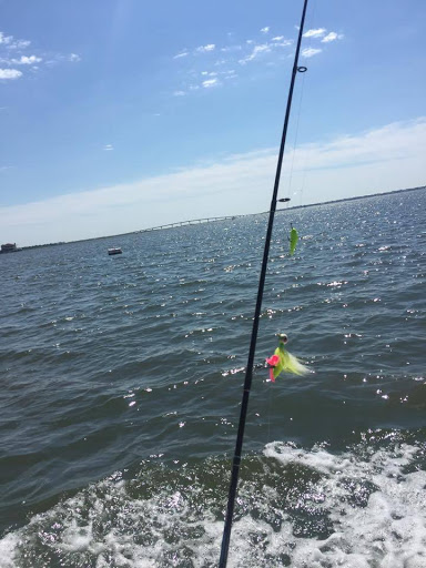 Fishing Charter «Badfish Fishing Charters», reviews and photos, 680 Bay Ave, Somers Point, NJ 08244, USA