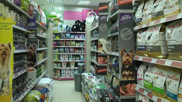 Зоомагазин «Четыре Лапы» в городе Чехов, фотографии