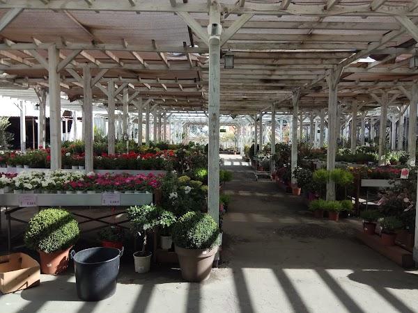 Brico Garden Toledo