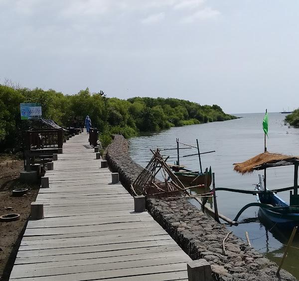 Wisata Kampung Blekok