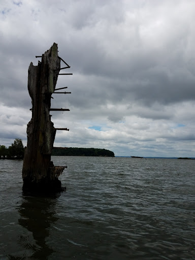 Tourist Attraction «Mallows Bay», reviews and photos, 1440 Wilson Landing Rd, Nanjemoy, MD 20662, USA