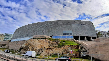 Museo Domus