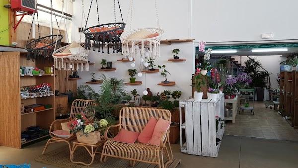 Centro de Jardinería Magal