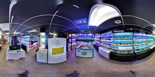 Pet Supply Store «The Fish Doctors», reviews and photos, 2703 Washtenaw Ave, Ypsilanti, MI 48197, USA