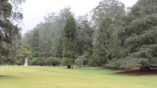 Bangalore Mysore Coorg Ooty Package