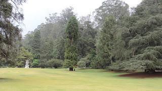 Mysore Ooty Coorg