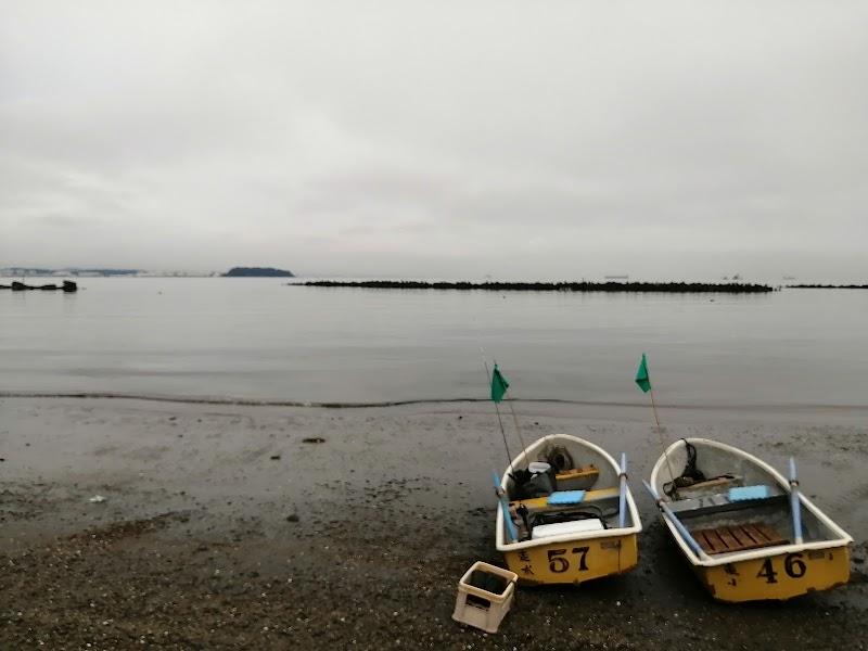 みつ ボート やま 花見ガレイを狙え!・伊勢町やまみつボート: amaguri倶楽部