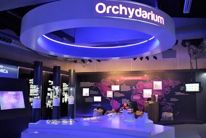 Orchydarium