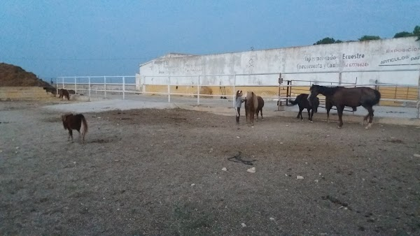 Centro de práctica de equitación El Tomillar